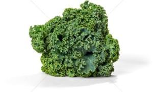 bundle-of-kale--isolated_1649754