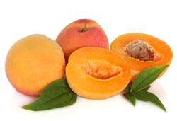 Apricots: Fresh