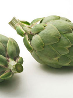 Artichoke Leaves