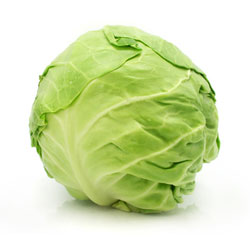 Cabbage: White