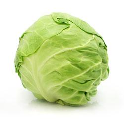 Cabbage: White