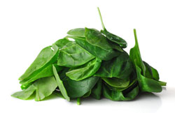 Spinach: Fresh