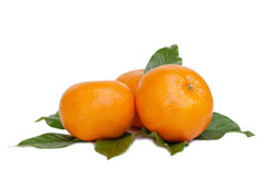 Tangerines: The Peel